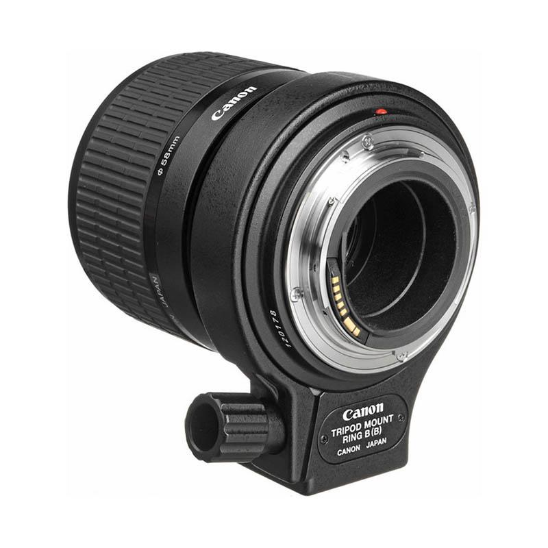 Canon MP-E65 f/2.8 1-5 x Macro